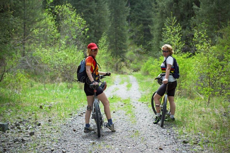 骑自行车森林春天二妇女的 免版税库存照片