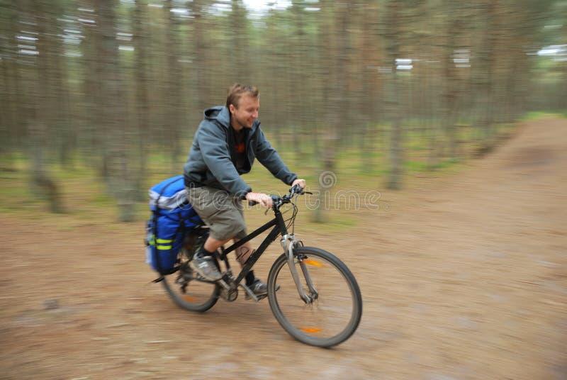 骑自行车的人森林 免版税库存照片