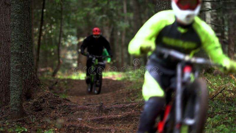 骑自行车的森林山 股票录像