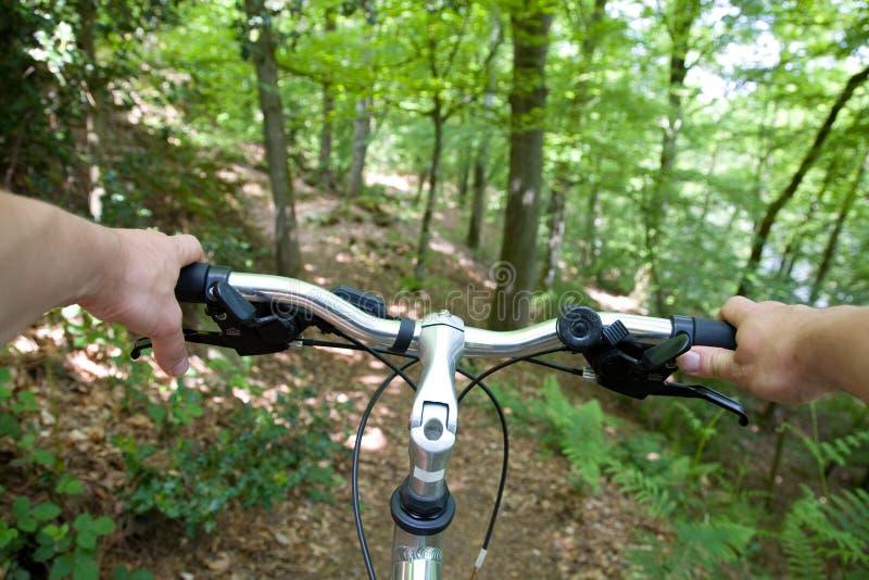 骑自行车的森林山 免版税图库摄影