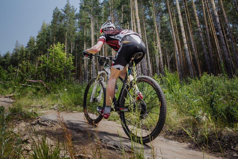 骑自行车的男性骑自行车者在森林足迹 免版税图库摄影