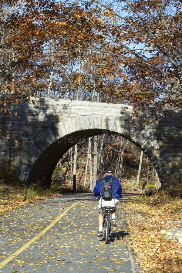 骑自行车的阿卡迪亚国家公园 免版税库存照片