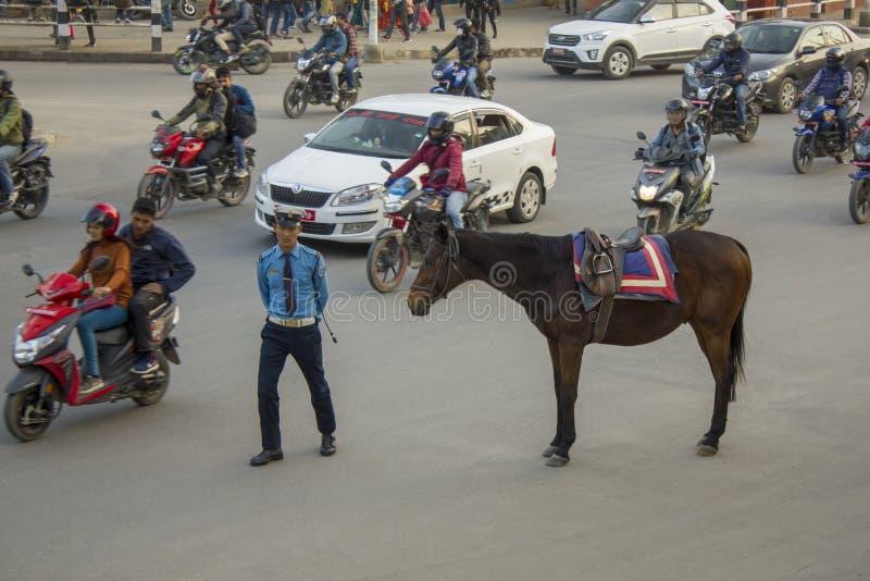 骑马交警和一匹棕色马在车行道以移动的汽车为背景 库存图片