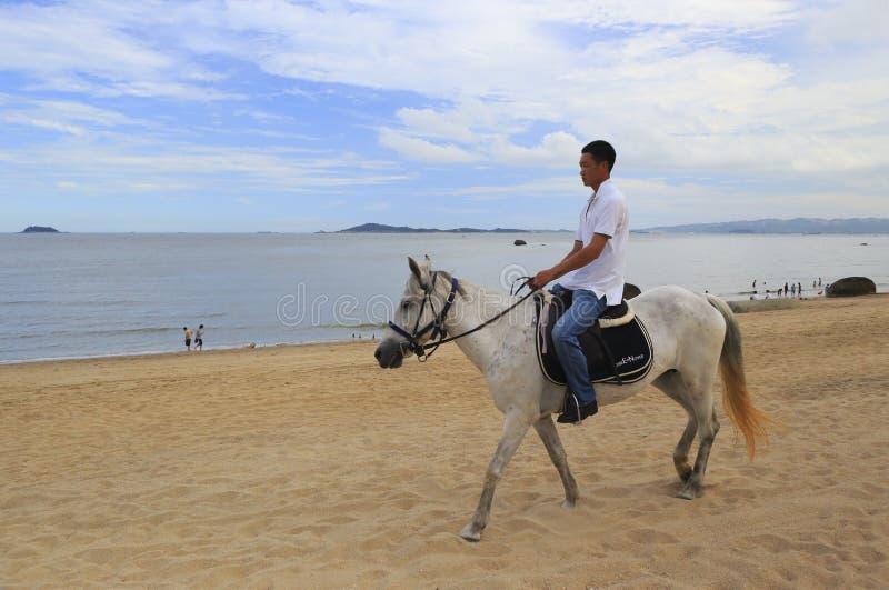 骑马的一个人在海的背景 免版税库存照片