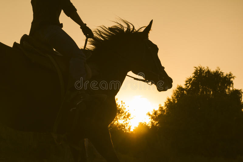 骑马的妇女的剪影-日落或日出,水平 免版税库存照片