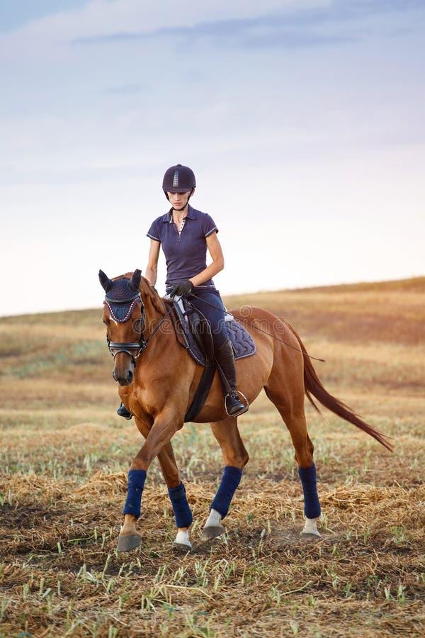 骑马的妇女 骑马女运动员骑师 库存照片