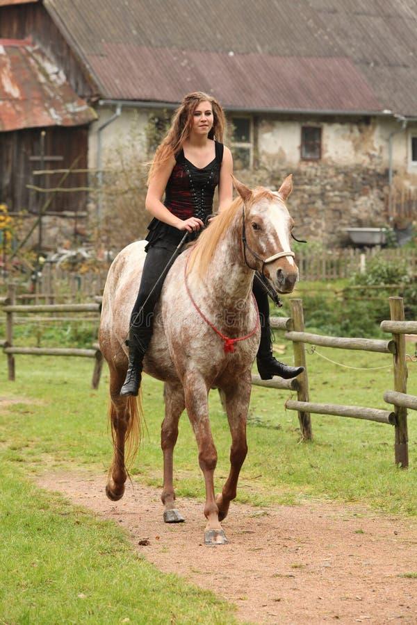 骑马的惊人的女孩,不用辔 免版税库存照片