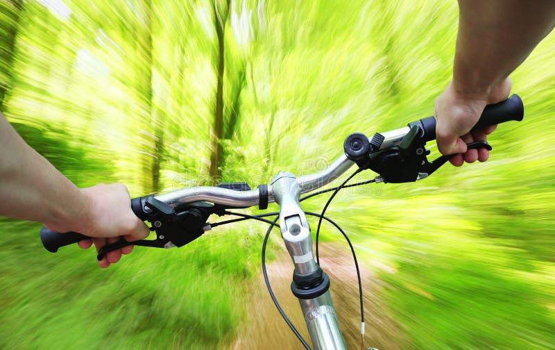 骑马自行车通过森林 免版税库存照片