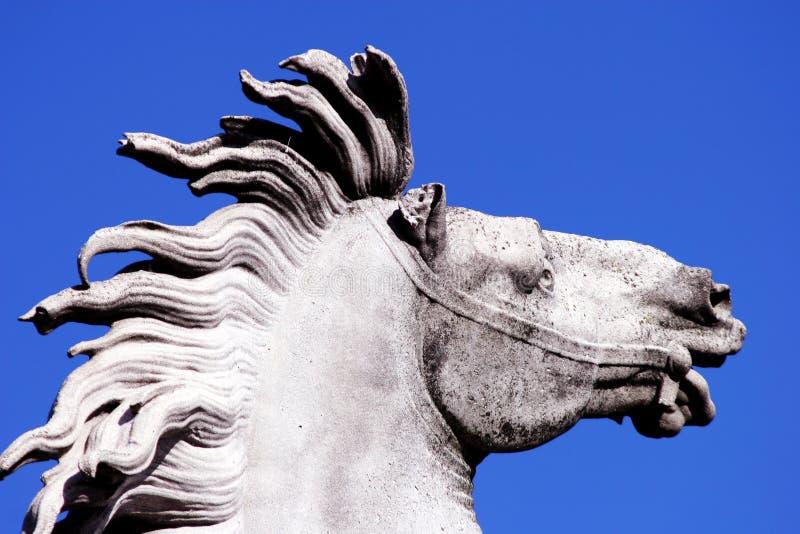 骑马雕象 库存图片