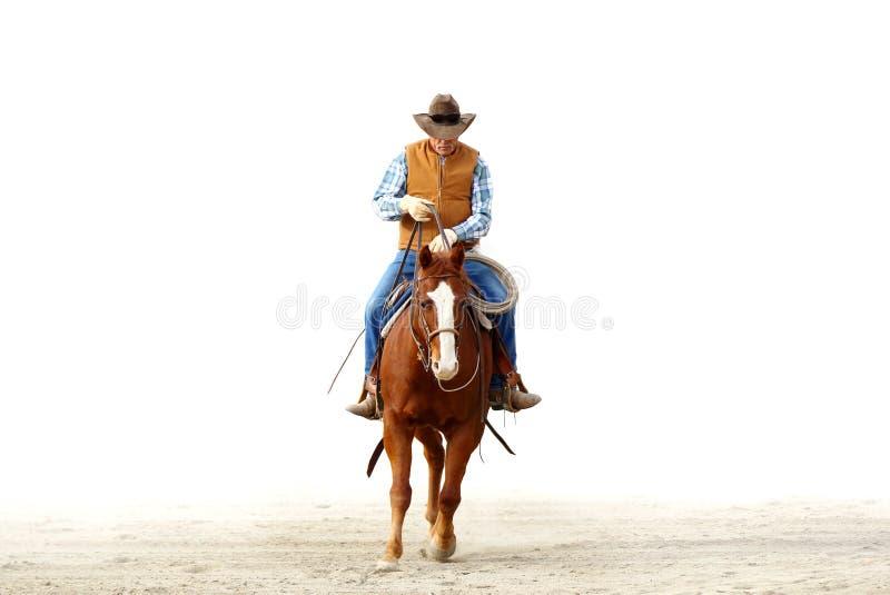 骑他的马,被隔绝的白色backgrou的牛仔 免版税库存照片