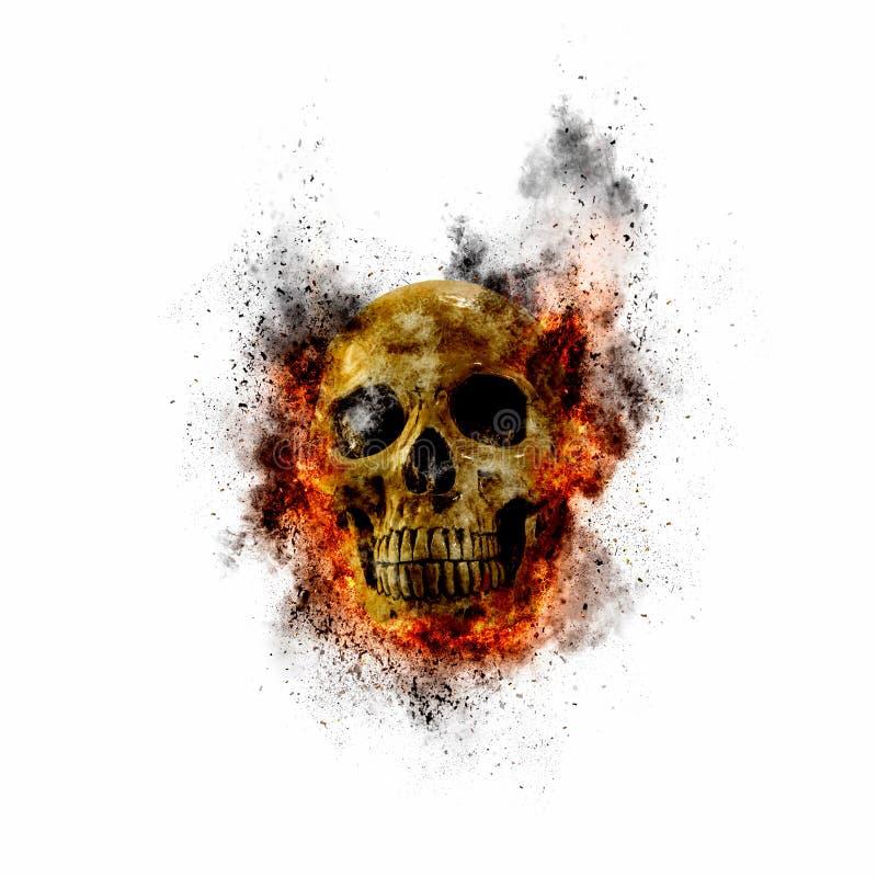 头骨发火焰对白色背景的射击效果 向量例证
