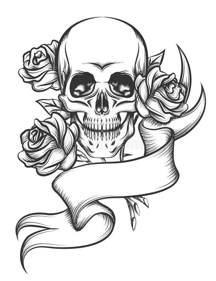 头骨和玫瑰与丝带 皇族释放例证