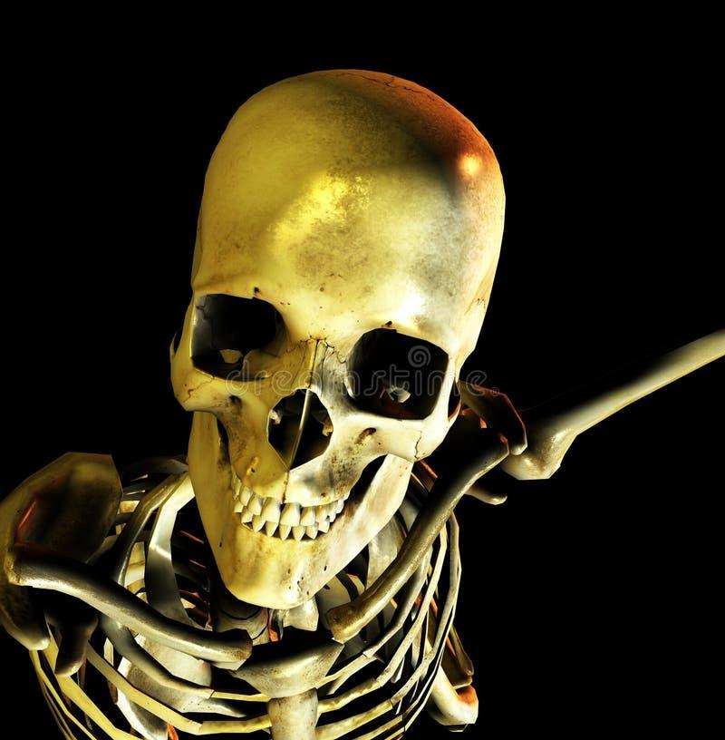 骨头姿势9 向量例证