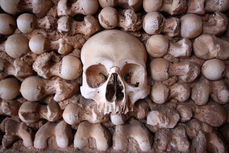 骨头被集中的头骨墙壁 库存照片