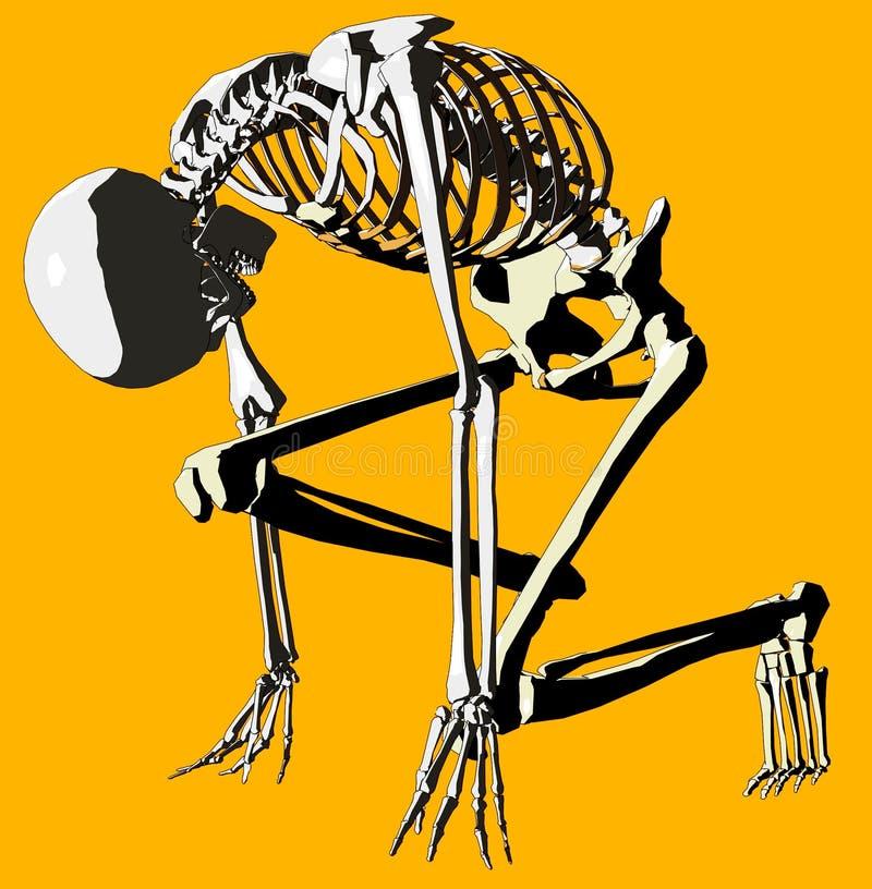 骨头143 向量例证