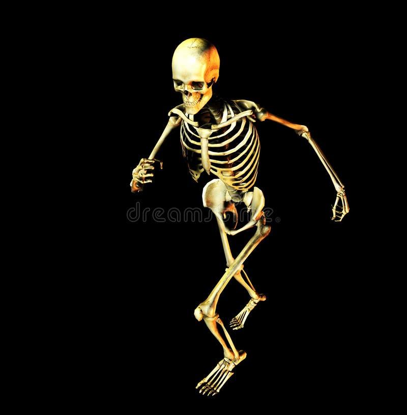骨头4 库存例证