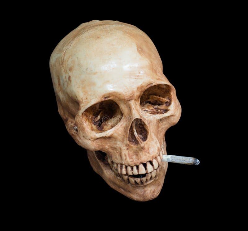 头骨抽烟的大麻,裁减路线 免版税库存照片