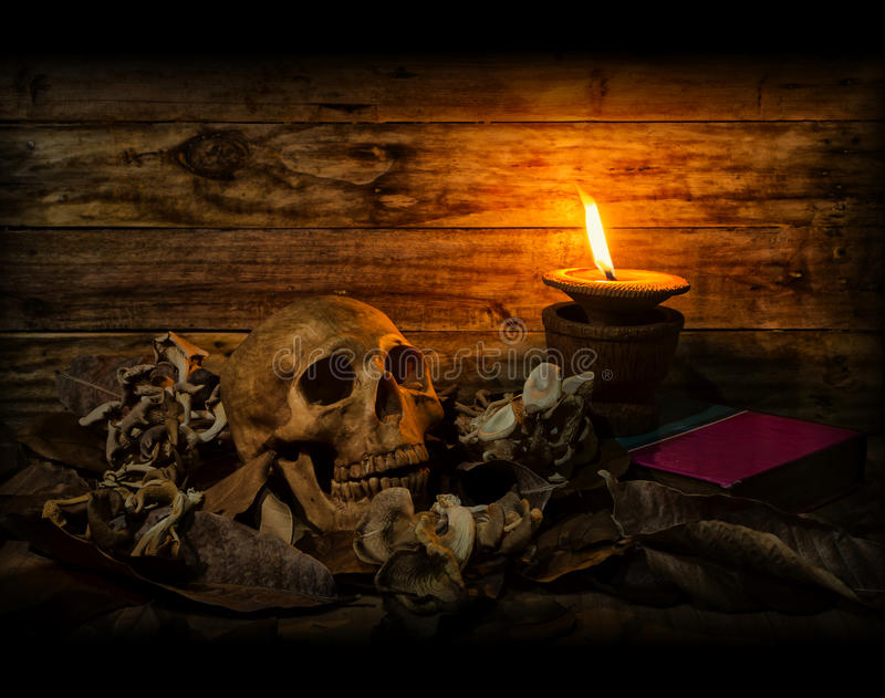 头骨静物画用干燥叶子干蘑菇和蜡烛点燃 免版税库存图片
