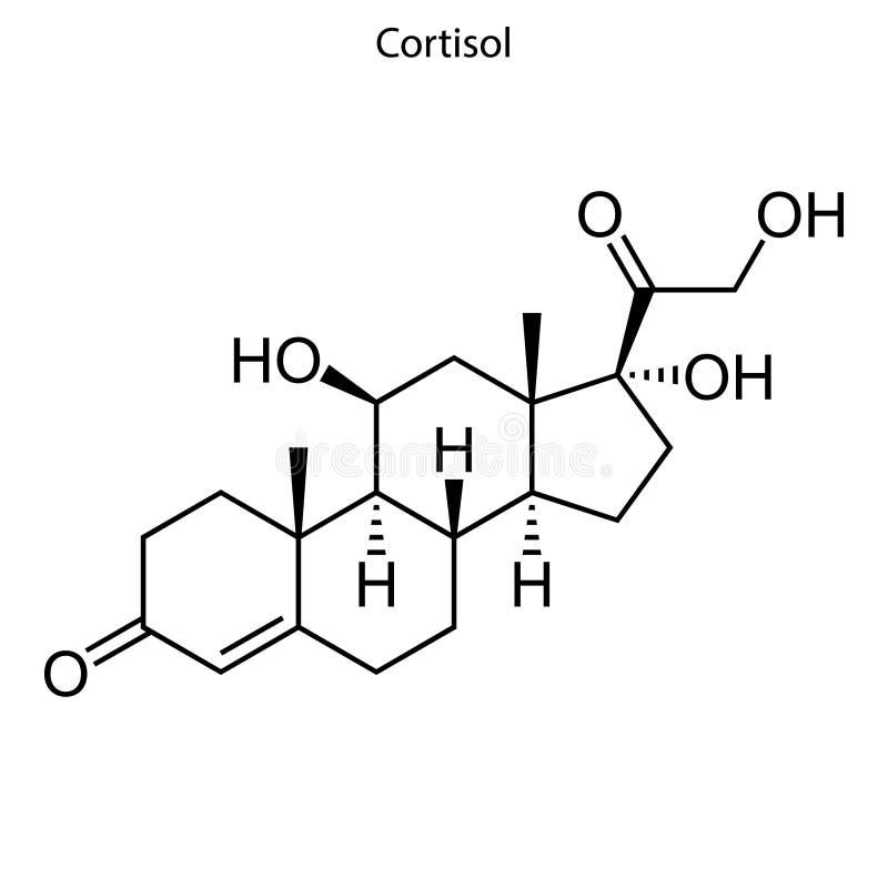 骨骼惯例类固醇分子 向量例证