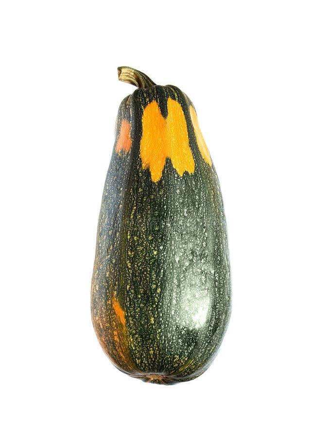 骨髓蔬菜 免版税图库摄影