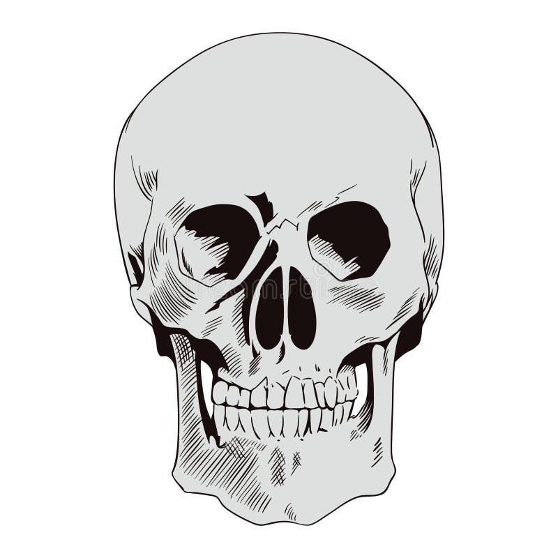 头骨 在减速火箭的样式的例证 向量例证