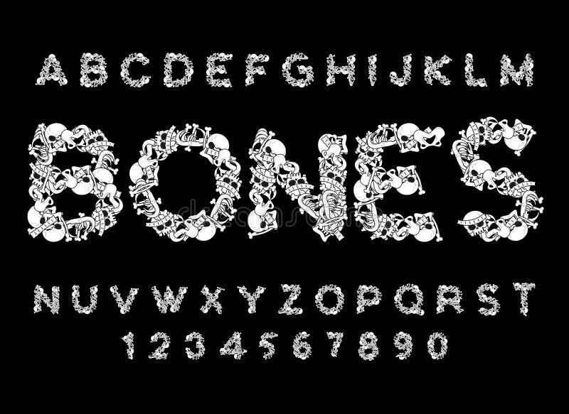 骨头字体 在解剖学上写字 骨骼ABC 头骨和脊椎 下颌 皇族释放例证