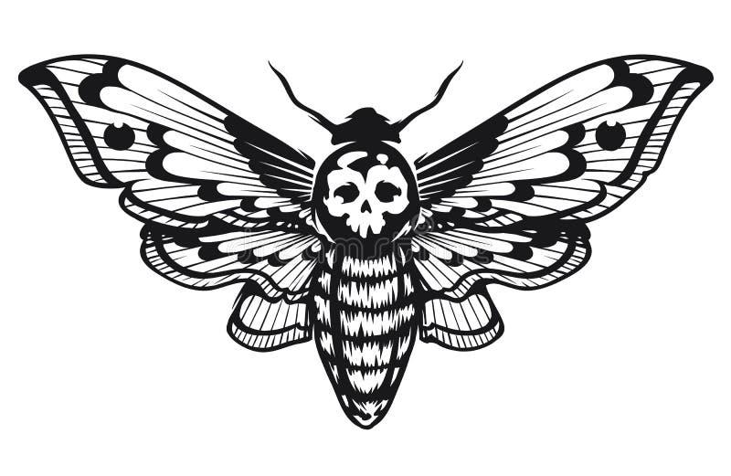 骷髅天蛾 向量例证