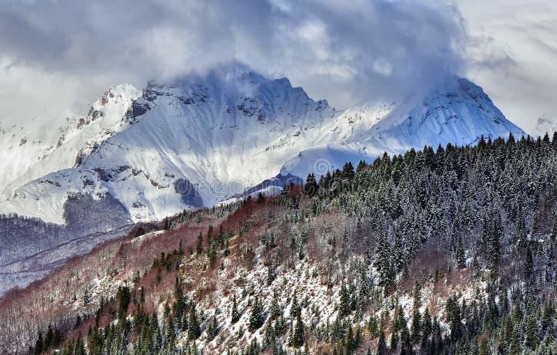高加索佐治亚gudauri山冬天 Korab,马其顿 免版税库存照片