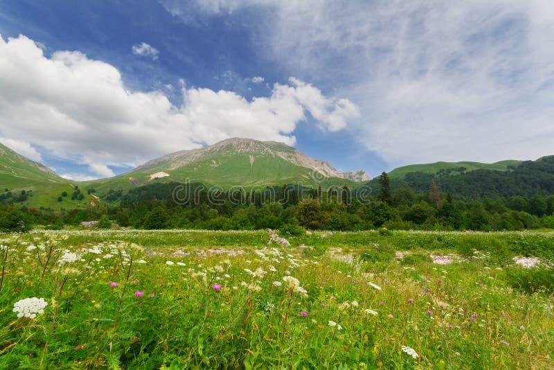 Download 高加索横向山北部全景 库存图片. 图片 包括有 自然, 生态, 小山, 云彩, 芦荟, 本质, 环境, 蓝色 - 59106223