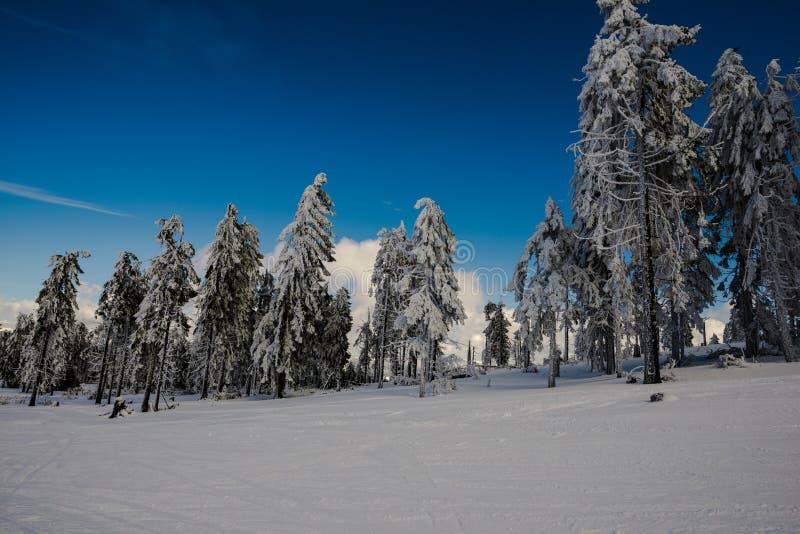 高加索dombay山全景滑雪倾斜视图 图库摄影