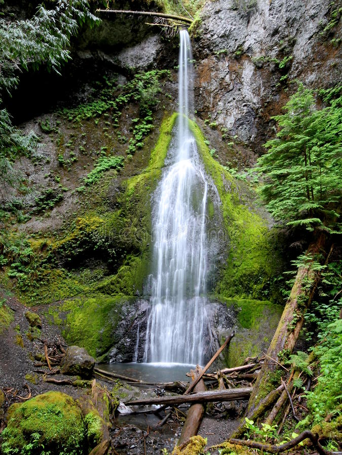 高和稀薄的瀑布在华盛顿州 库存图片