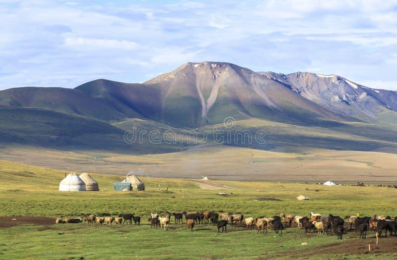 高地在吉尔吉斯斯坦 免版税库存图片