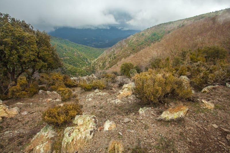 高地的深峡谷与低cloudscape 库存照片