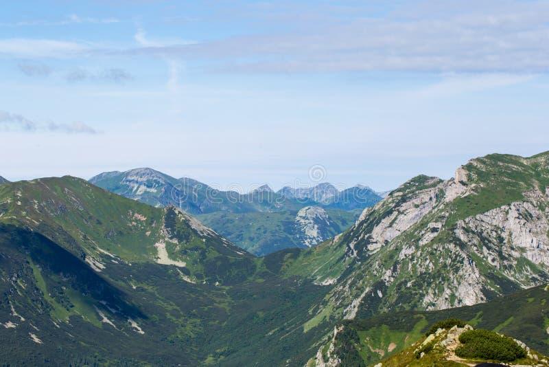 高塔特拉山脉 景观夏季场景 免版税库存图片