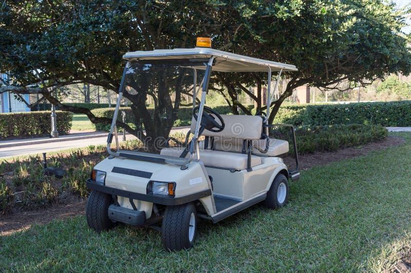 高尔夫球儿童车 免版税图库摄影
