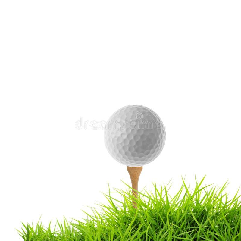 高尔夫球发球区域 库存照片