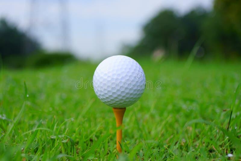 高尔夫球和发球区域在高尔夫球绿色路线背景 免版税库存照片