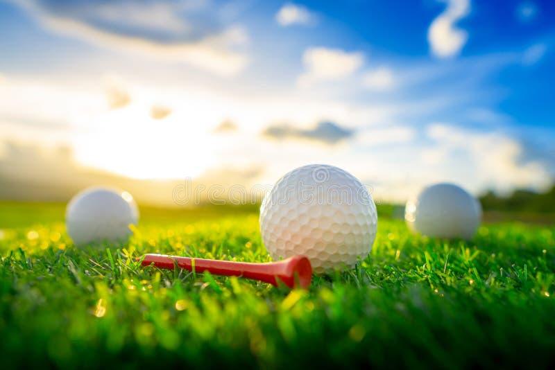高尔夫球和红色发球区域在与日落的绿色背景固定 免版税图库摄影