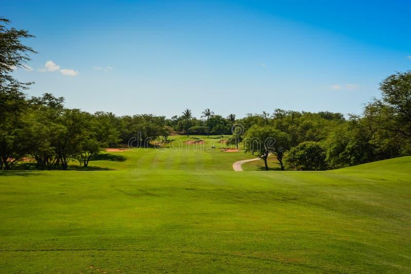 高尔夫球在毛伊,夏威夷群岛 免版税库存照片