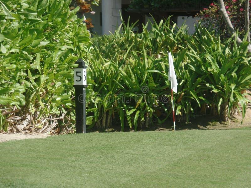 高尔夫球场的接近的图象 免版税库存照片