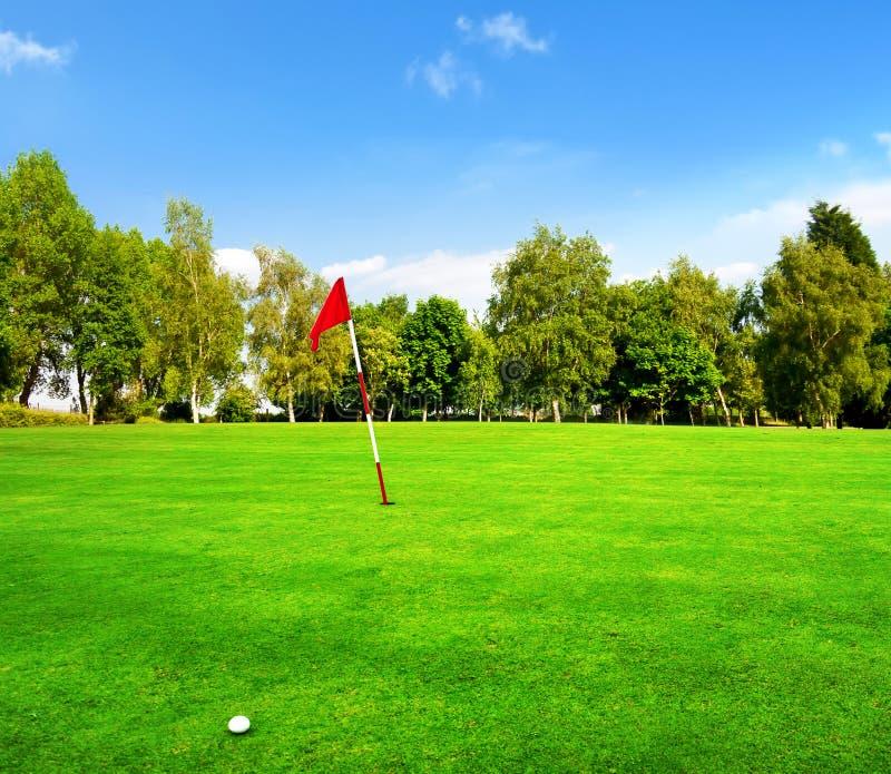 高尔夫球场绿色 库存照片