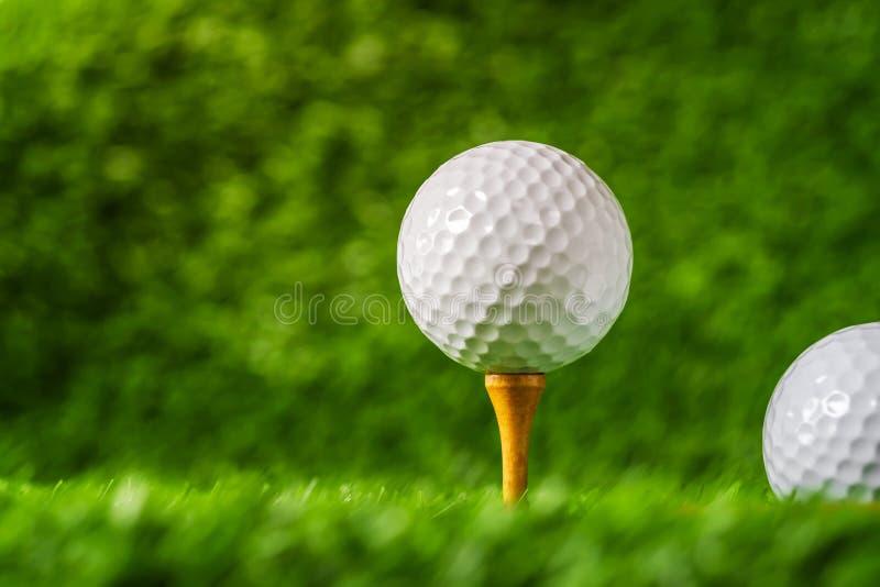 高尔夫球有绿草背景,在发球区域特写镜头 库存照片