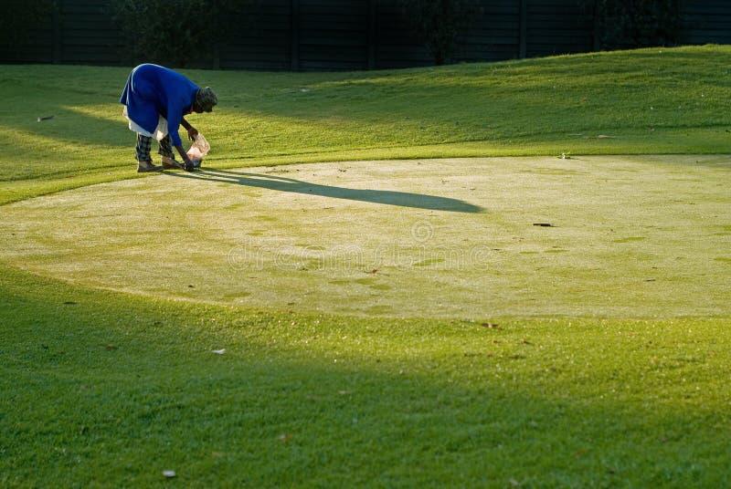高尔夫球绿色维护 免版税库存图片