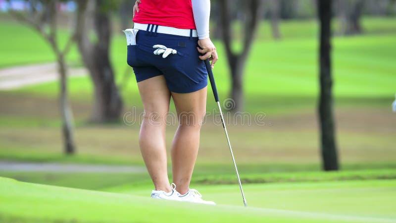 高尔夫球运动员由从发球区域箱子的高尔夫俱乐部推挤高尔夫球在竞争比赛的高尔夫球场 免版税库存照片