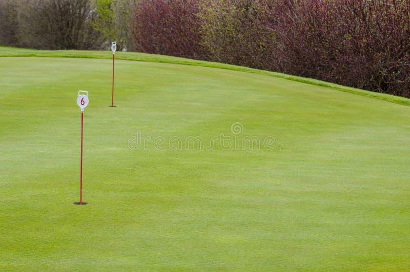 Download 高尔夫球绿色特写镜头 库存图片. 图片 包括有 竹子, 高尔夫球, 航路, 绿色, 背包, 商业, beautifuler - 72355815