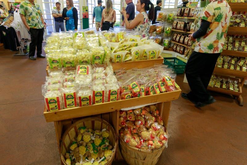 高尔菠萝种植园的看法在Wahiawa,游览目的地 免版税库存图片