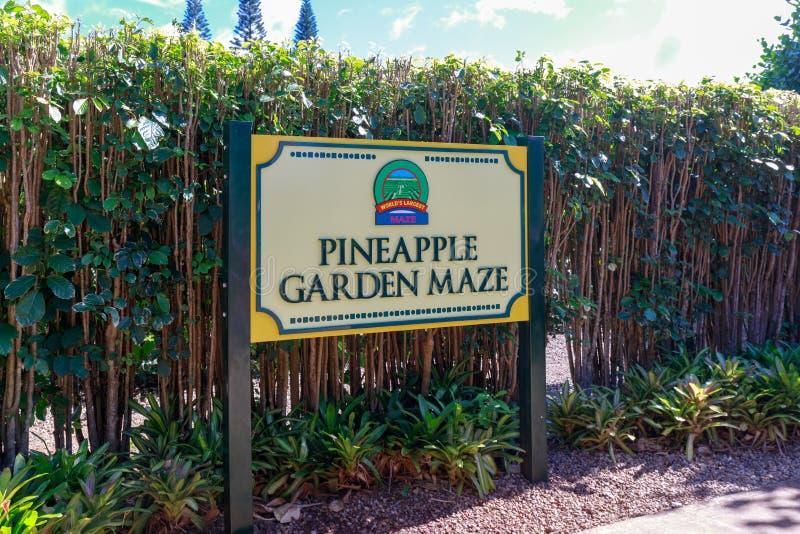 高尔菠萝种植园的看法在Wahiawa,游览目的地 库存图片