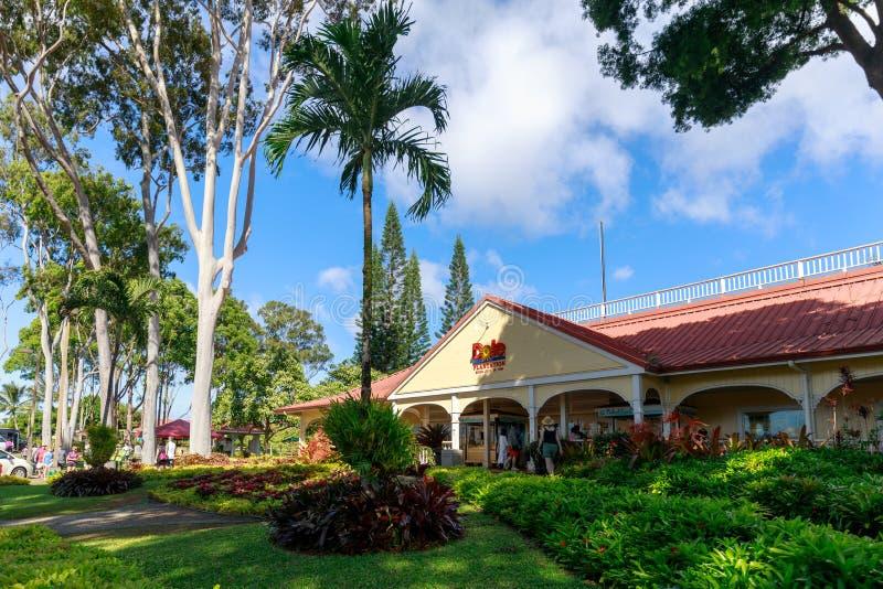 高尔菠萝种植园的看法在Wahiawa,游览目的地 免版税图库摄影