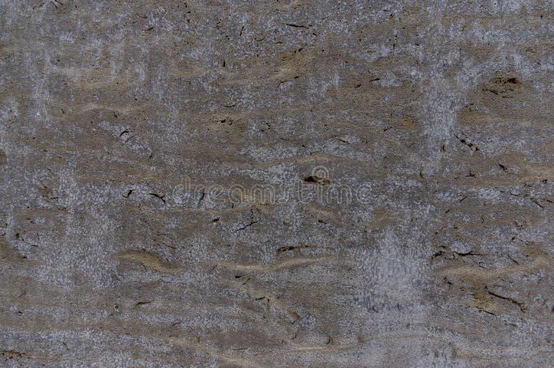 高尚的自然石石灰华壳石灰石当墙壁金属 免版税库存照片