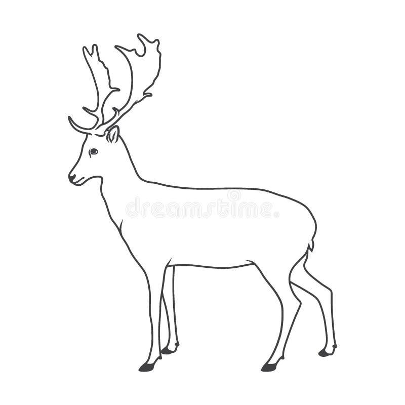 高尚的鹿的例证 库存例证